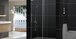 Looking for the Best shower doors?